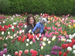 Cory & Kristina in tulips (Valka, May 20)