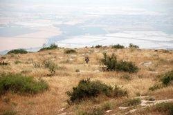 Mt.Gilboa