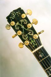 Limited Edition headstock