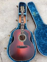 Limited Edition 12 String