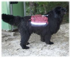 Dakota backpacking - photo taken Sept 6, 2008