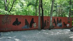 Painted Newfie Fence
