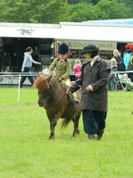 Armagh show