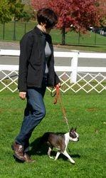 Palisades Kennel Club--10/12/13