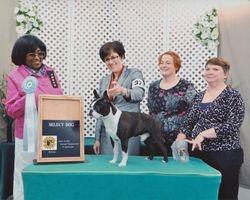 Boston Terrier Club of MD--4/12/15
