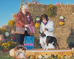 South Jersey Kennel Club--10/19/14