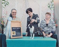 Boston Terrier Club of MD--4/11/15