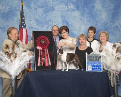 Boston Terrier Club of America--4/29/15
