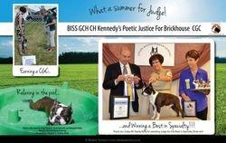 EBoston Terriers--September/October 2012