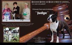 EBoston Terriers--June/July 2011