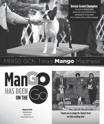 Dogs in Review--November 2012