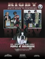 Canine Chronicle--December 2011