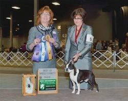New Brunswick Kennel Club--3/22/14