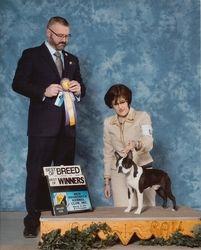 New Brunswick Kennel Club--3/21/14