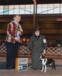 Rockland County Kennel Club--2/22/14