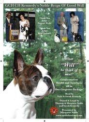 Canine Chronicle--Dec 2010/Jan 2011
