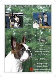 Dog News--Dec 3, 2010