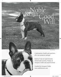 ShowSight Magazine--May 2010