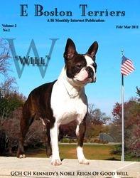 EBoston Terriers--Feb/Mar 2011