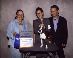 Lenape Boston Terrier Club-- 10/25/09