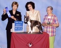 Greater Atlanta Boston Terrier Club--5/18/10