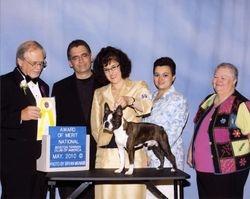 Boston Terrier Club of America--5/21/10