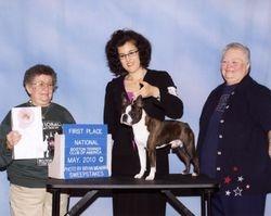 Boston Terrier Club of America--5/19/10