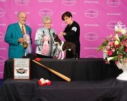 Boston Terrier Club of America--5/21/14
