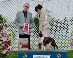 Ladies Kennel Association of America--5/20/11