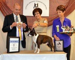 Lenape Boston Terrier Club--8/5/12