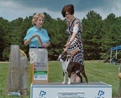 Riverhead Kennel CLub--7/16/11
