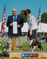 Monmouth County Kennel Club--5/28/11