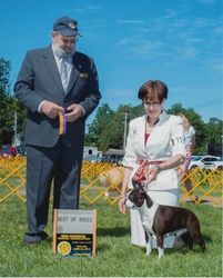 Mid-Hudson Kennel Association--6/21/14