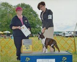 Putnam Kennel Club--7/19/14