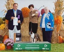 Boston Terrier Club of Detroit--9/28/12