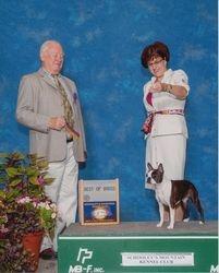 Schooley Mountain Kennel Club--9/3/12