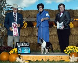 Valley Forge Kennel Club--9/23/12