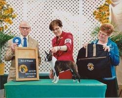 Boston Terrier Club of MD--4/12/14