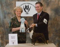 Lenape Boston Terrier Club--10/30/11