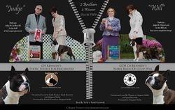 EBoston Terriers--August/September 2011