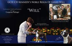 EBoston Terriers--March/April 2012
