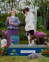 Long Island Kennel Club--5/22/11