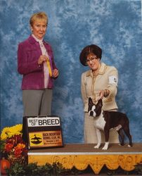 Back Mountain Kennel Club--11/2/13
