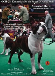 Canine Chronicle--April 2011
