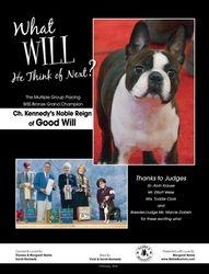 Canine Chronicle--February 2014
