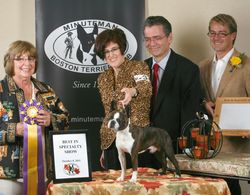 Minuteman Boston Terrier Club--10/8/11