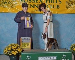 Sussex Hills Kennel Club--9/4/11