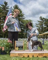 Taconic Hills Kennel Club--6/6/14
