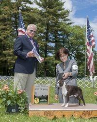 Taconic Hills Kennel Club--6/5/14
