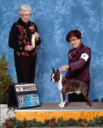 Valley Forge Kennel Club--12/8/13